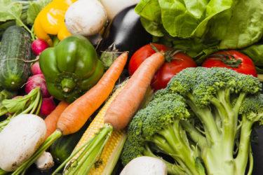 【トウモロコシ】糖質制限の勘違い 野菜編【ゴボウ】