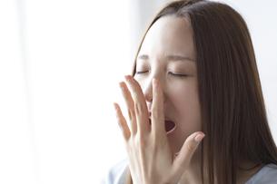 【レプチン】睡眠不足と肥満に関わるホルモンその2~よく噛んでよく寝て~