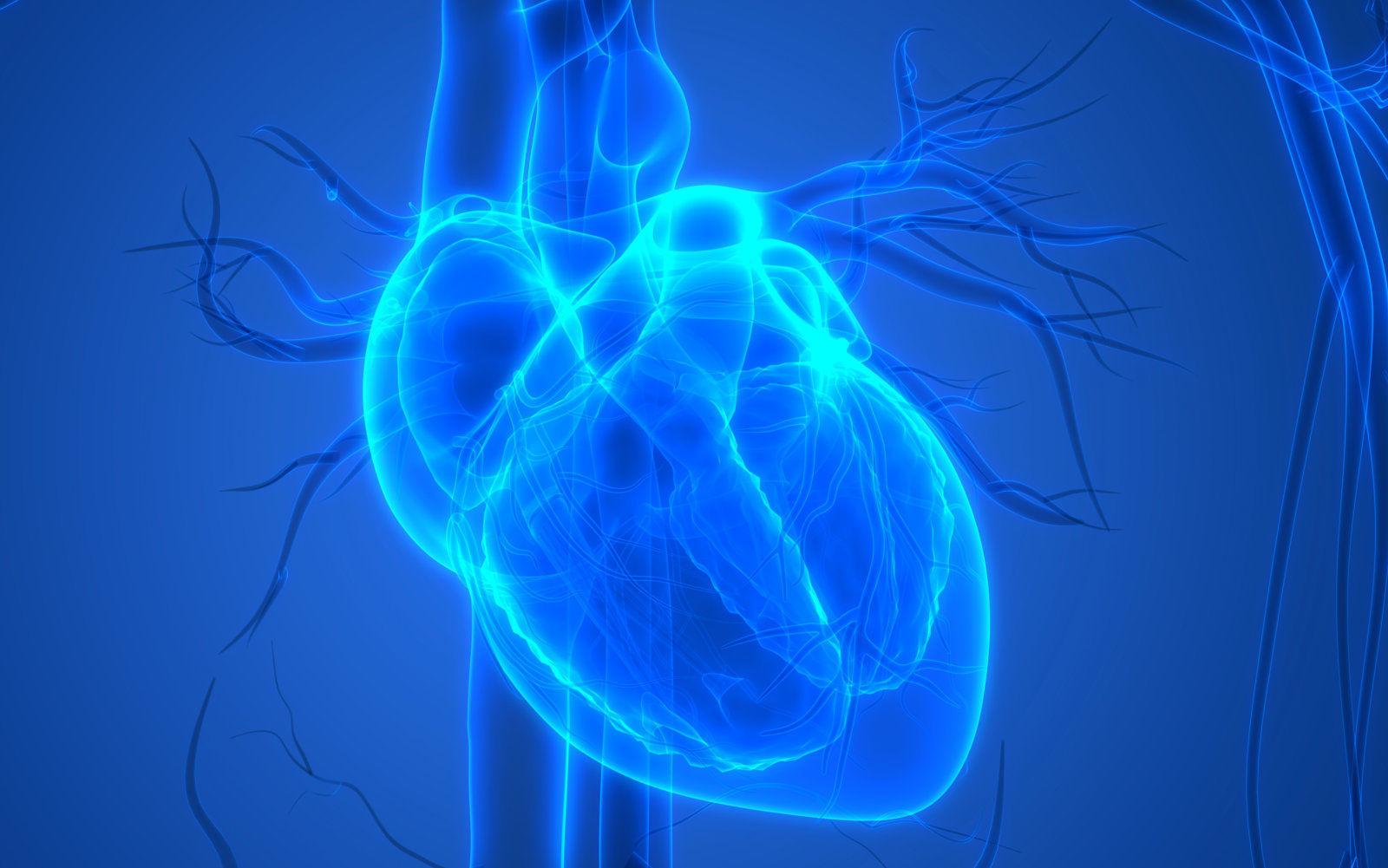 【本当なら】糖質制限で心臓が苦しくなる?心室細動のリスクも上昇?それって本当?【やばいけど】